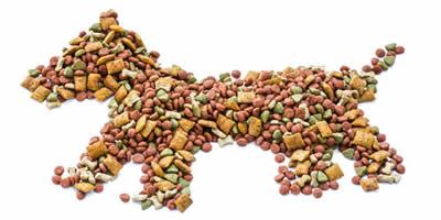 dry_dog_food